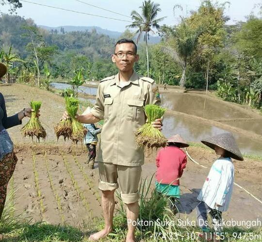 Penyuluh pertanian yang mendampingi Poktan Suka-suka, Dedy Darisman